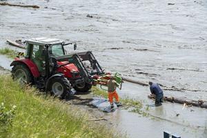 Hochwasser im Rhein